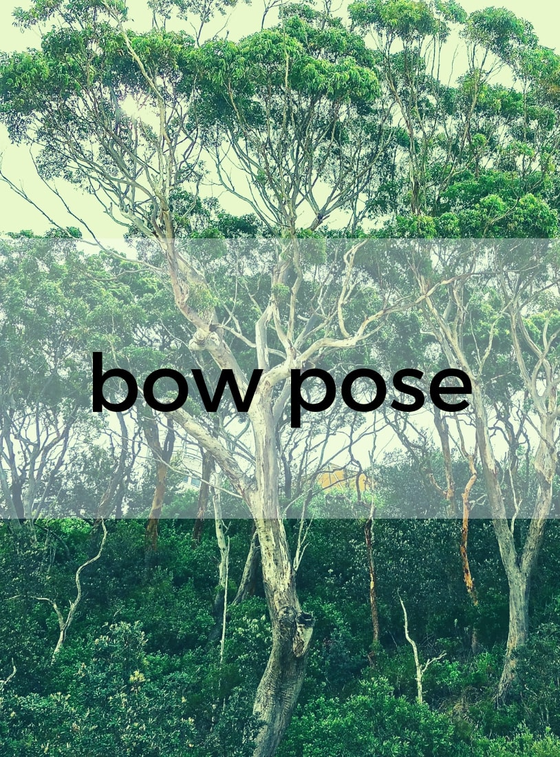 Bow Pose Pure Hot Yoga Bayswater Melbourne Yoga Classes