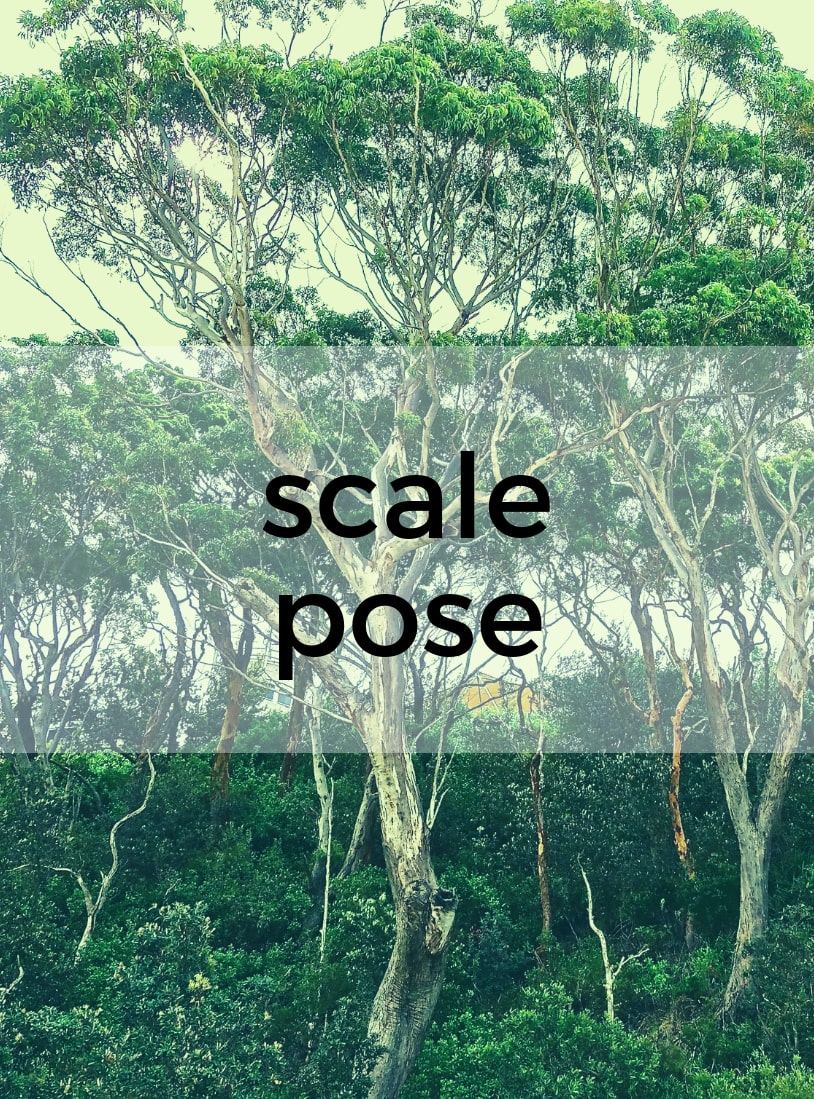 Scale Pose Pure Hot Yoga Bayswater Melbourne Yoga Classes