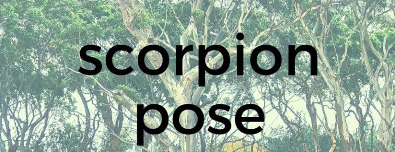 Scorpion Pose Pure Hot Yoga Bayswater Melbourne Yoga Classes
