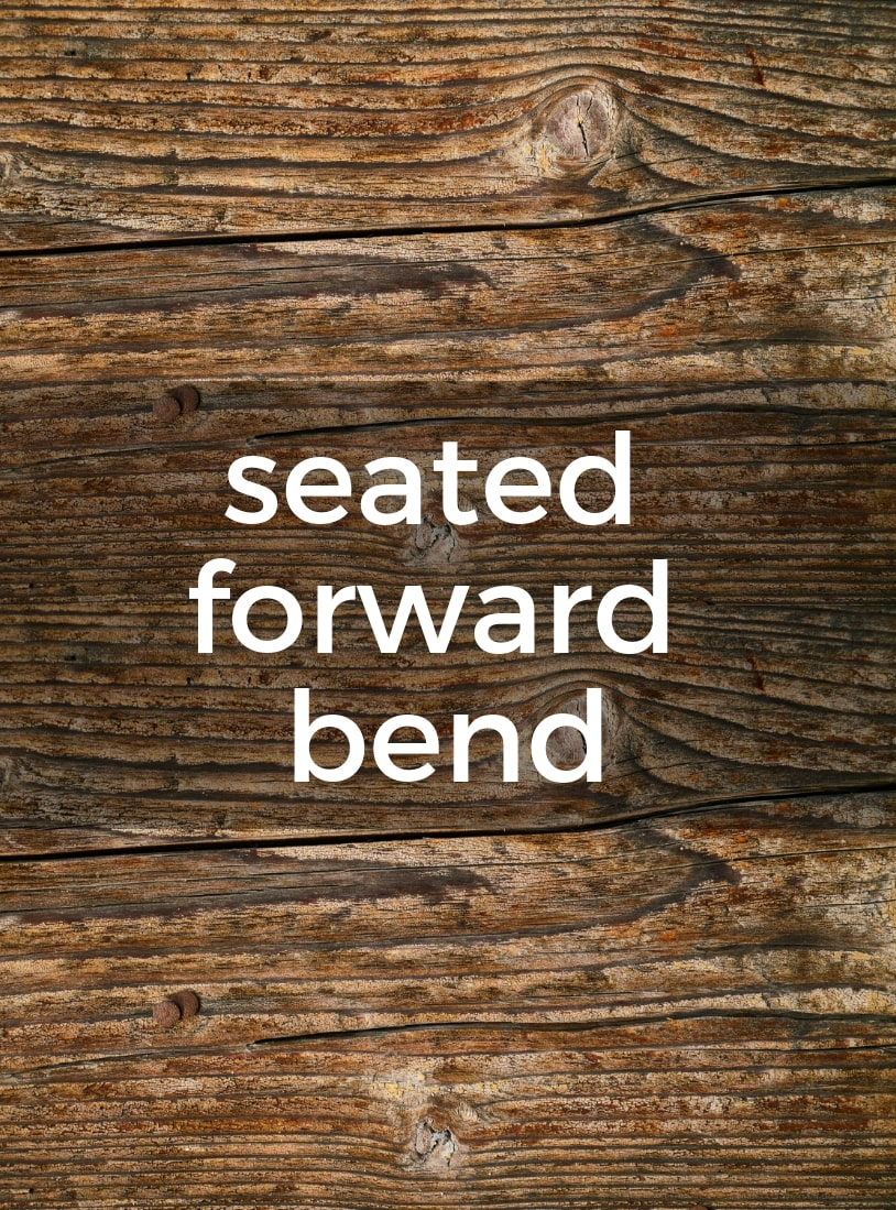 Seated Forward Bend Pure Hot Yoga Bayswater Melbourne Yoga Classes