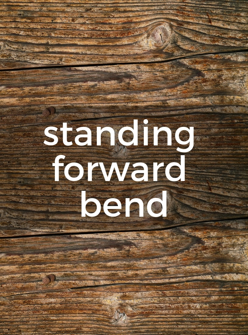 Standing Forward Bend Pure Hot Yoga Bayswater Melbourne Yoga Classes