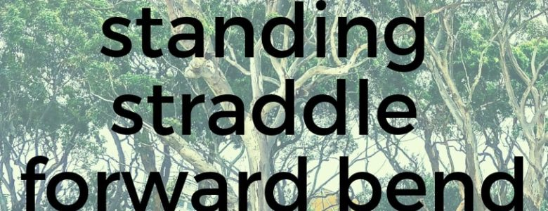 Standing Straddle Forward Bend Pure Hot Yoga Bayswater Melbourne Yoga Classes
