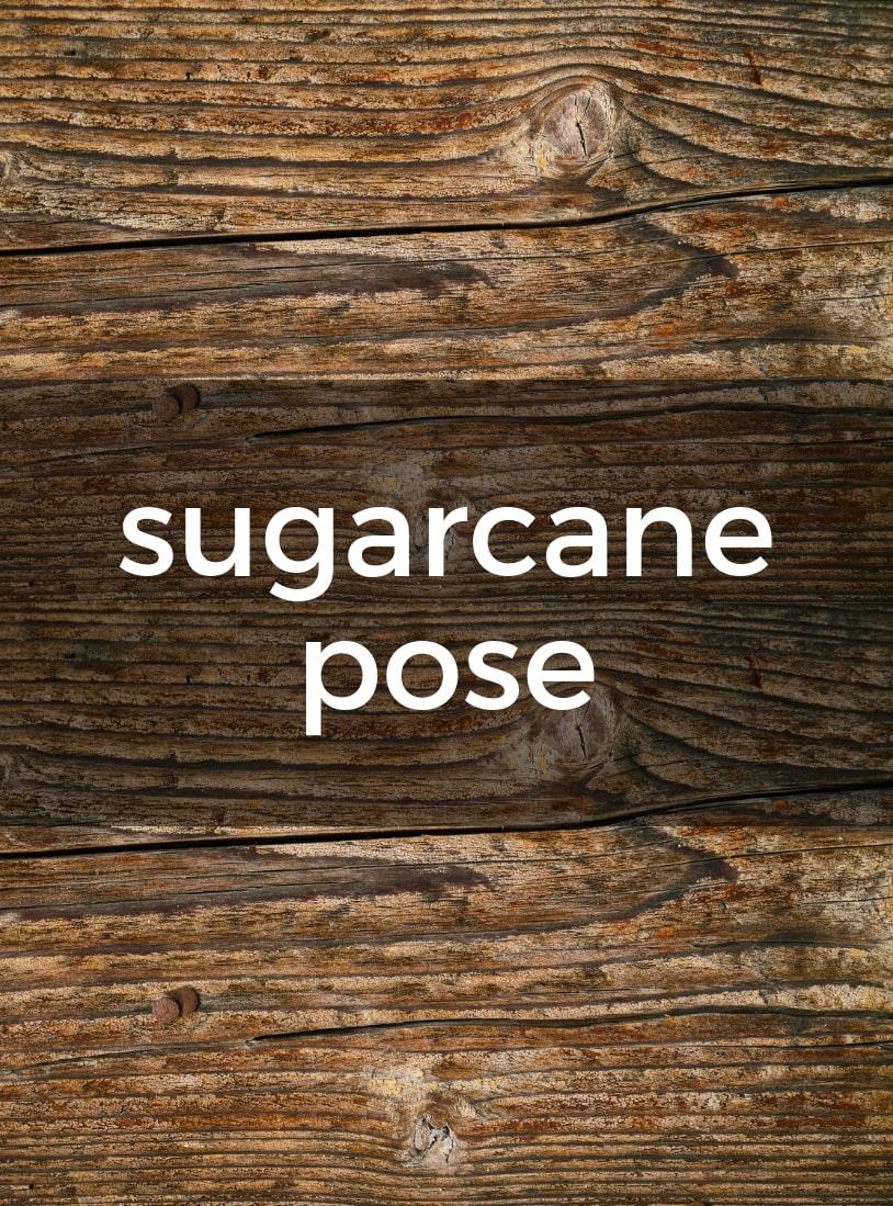 Sugarcane Pose Pure Hot Yoga Bayswater Melbourne Yoga Classes